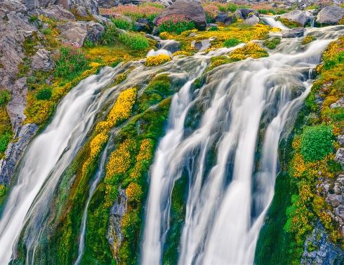 Paradise River Falls