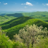 Layers of lush green Blue Ridge hills in springtime near Asheville, North Carolina