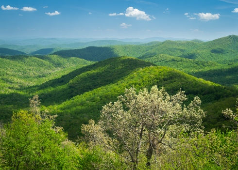 Layers of lush green Blue Ridge hills in springtime near Asheville, North Carolina