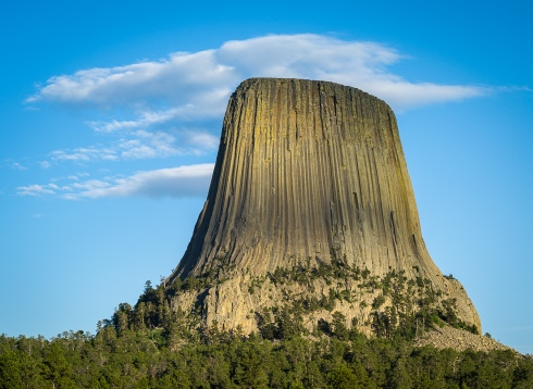 The iconic basalt columns of Devils Tower, made famous by the film Close Encounters of the Third Kind