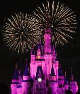 Fireworks light up the sky above Cinderella Castle at the Magic Kingdom