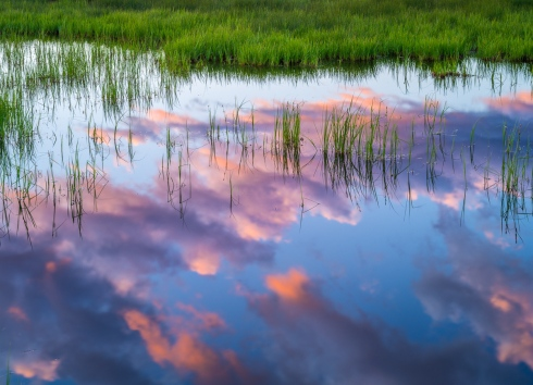 Clouds at sunset create a compelling reflection in a pond at Yellowstone National Park