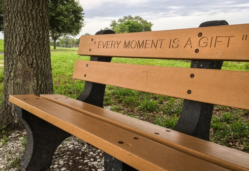 The message on the bench that greets me at the trailhead serves as a great reminder