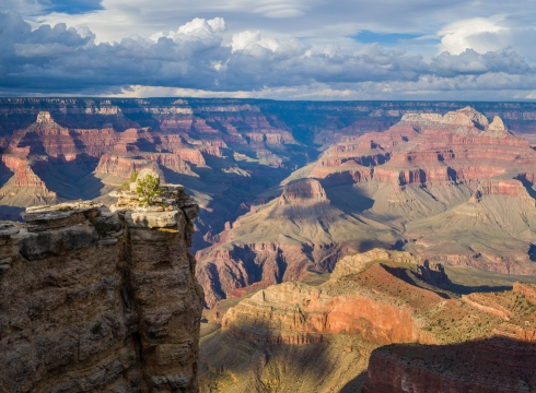 I've visited the Grand Canyon many times but the views still make me gasp in awe