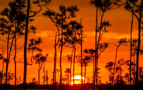 Sunrise and sunset can be equally glorious in Everglades National Park